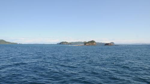 Unele insule din Oceanul Pacific manifestă rezistenţă la schimbările climatice