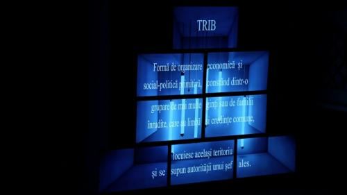 Spectacolul Triburi, în regia lui Vlad Cristache, la Festivalul Zile și Nopți de Teatru la Brăila
