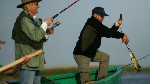 Toamna se numără concursurile de pescuit în Delta Dunării