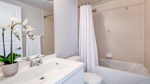 Un studiu dezvăluie momentul cel mai potrivit pentru duş