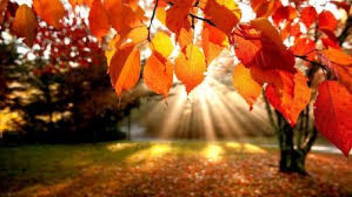 Prognoza METEO pentru 23, 24, 25 şi 26 octombrie: Cer senin