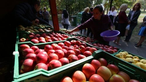Mărul românesc, zdrobit de subvenţiile poloneze