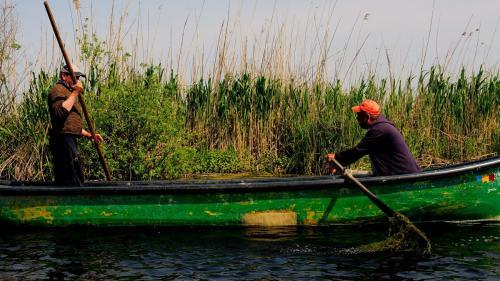 Operatori turistici, amendați că au strâns deșeuri din Delta Dunării
