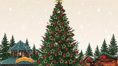 S-a dat startul sărbătorilor de iarnă în Capitală