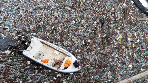 Cât plastic ajunge în organismul nostru în fiecare săptămână