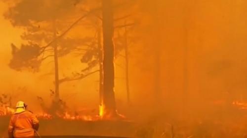 Incendiile de vegetaţie se vor înrăutăţi, iar oamenii trebuie să se adapteze, avertizează experţii