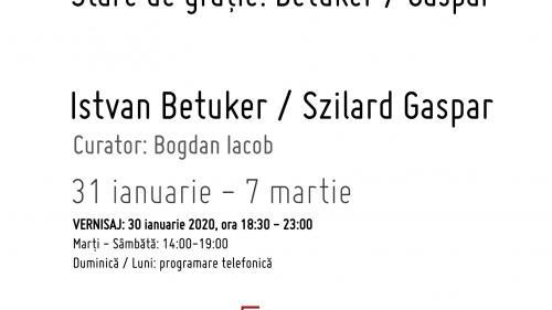 La intersecția dintre pictură, sculptură și performance art.Duo show-ul Stare de grație.Betuker / Gaspar deschide programul curatorial al Galeriei Sector 1în 2020