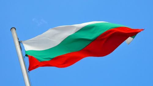 Bulgaria cumpără hidroxiclorochina din China