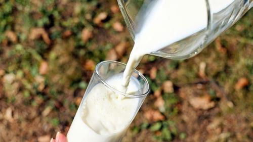 Fermierii americani, obligați să arunce laptele din cauza pandemiei