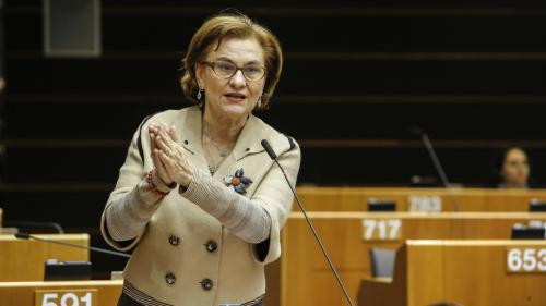 Europarlamentara Maria Grapini îi cere premierului să ia măsuri pentru oprirea tăierilor de păduri