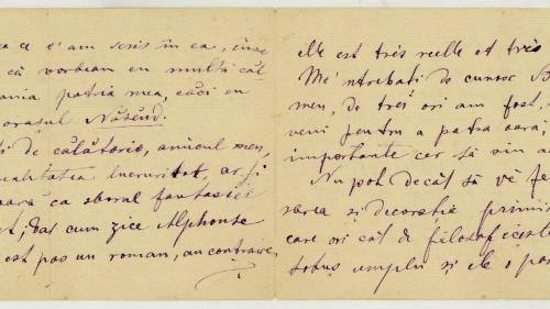 Un psihilog a sculptat pe poartă versuri scrise de Mihai Eminescu