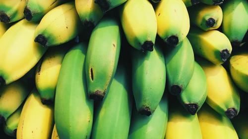 Fiți atenți atunci când cumpărați fructe. Ce înseamnă numerele de pe eticheta lipită pe banane, portocale, mere?