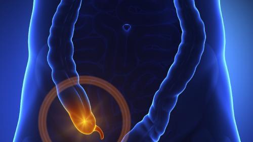 Apendicul face parte din apărarea imunitară