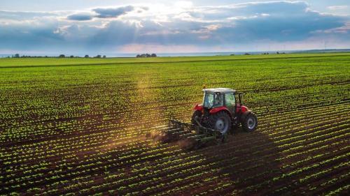 410 milioane de euro pentru agricultură și industrie alimentară