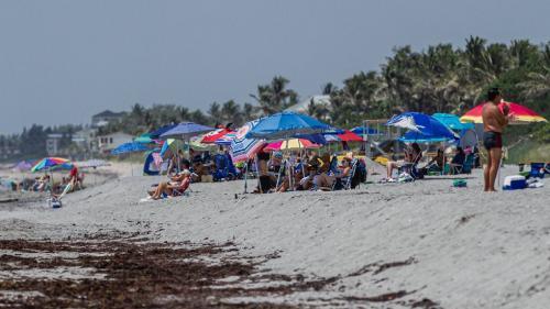 Rafila, avertisment pentru românii care merg în concediu: Zonele turistice sunt niște surse posibile pentru răspândirea infecției
