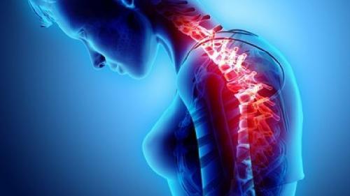 Schimbarea balanţei hormonale poate afecta vertebrele