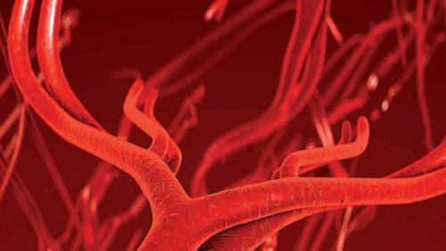 Vasele de sânge îmbătrânesc diferit la femei față de bărbați. Pentru ce boli riscul e crescut?