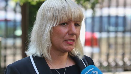 GIP: Camelia Bogdan a primit viză în SUA, deși a colaborat cu un site de propagandă anti-americană