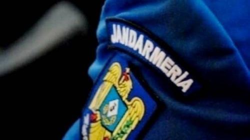 Dinamo-Steaua, derby cu daună totală: Jandarmeria se disculpă