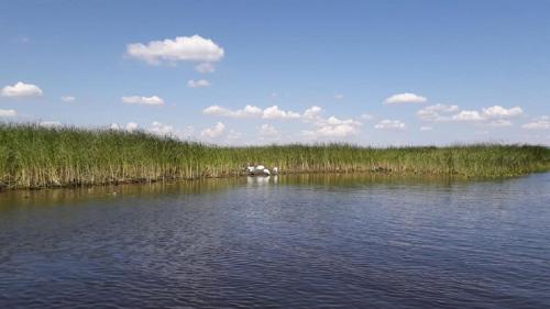Toamna în Delta Dunării, la pescuit și relaxare