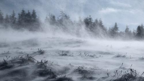 Vine IARNA: Cod galben de ninsori și viscol în România