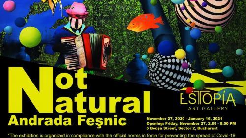 Not Natural, de Andrada Fesnic la Galeria Estopia