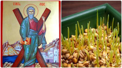 Semnificația grâului de Sfântul Andrei, de la agricultură la misticism