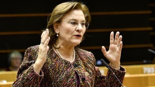 Maria Grapini condamnă amestecul politicului în Educație