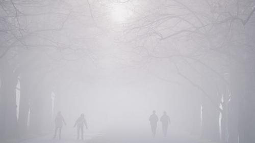 Cod galben de ceață, ghețuș și chiciură în două județe