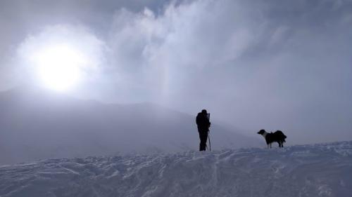Salvatorii din avalanșe. Câinii, de 30 de ori mai eficienți decât oamenii