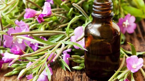 Terapia Bach: cele 38 de remedii preparate din flori