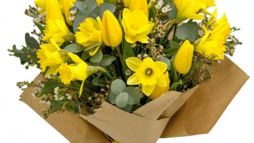 Cum aduc florile stralucirea si bucuria in casele noastre?