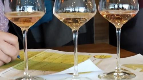 Un nou producător autohton de vinuri se listează pe bursă