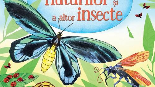 Oameni și insecte, dintr-o altă perspectivă