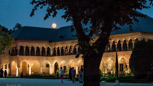 Noaptea Muzeelor în Capitală. 52 de instituții de cultură își vor deschide porțile