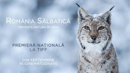 România Sălbatică, cel mai vast proiect de film documentar desfășurat în țara noastră, va avea premiera națională la TIFF