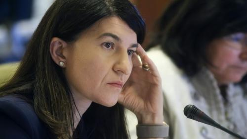 Violeta Alexandru, PNL, mesaj pentru simpatizanții USR-PLUS: Prea mult hate!