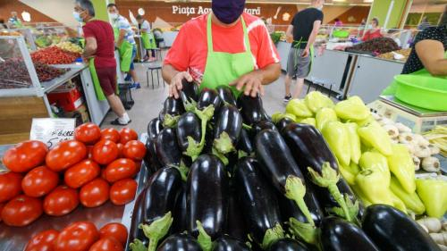 Ungaria: Din cauza penuriei de forţă de muncă, fermele de fructe şi legume s-ar putea închide