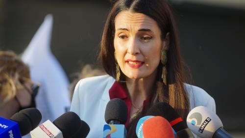 PSD: Clotilde Armand a vrut să dea 48.000.000 de lei pe arbori, gazon și garduri vii