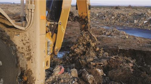 Dezastrul ecologic de la Smârdan - 150.000 de tone de deșeuri animaliere aruncate pe câmp