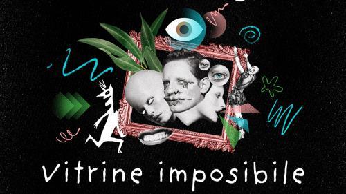 VITRINE Imposibile, o instalație performativă care va putea fi văzută, descoperită și studiată pe 9, 10, 23 și 24 octombrie în București